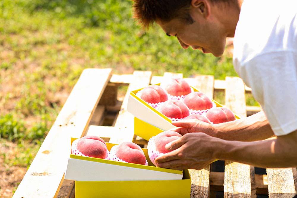 農産物とD2Cとパッケージ、化粧箱、開封体験、桃、ギフト、贈答